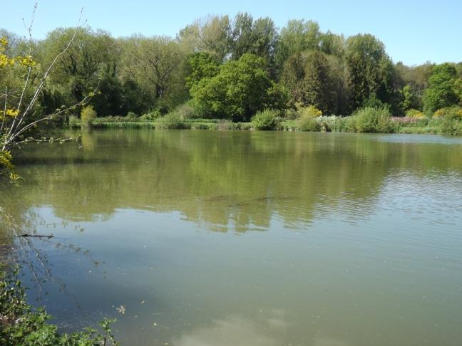Vale Farm Fishery